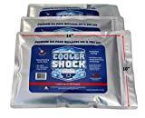 3 Pack Large 18°F Cooler Freeze Packs 10'x14' - No More Ice! Replaces 18 lbs. of Ice and is Reusable - Easy Fill - You Add Water and Save! – 12 lbs. Total When Filled (Zipper Seal)