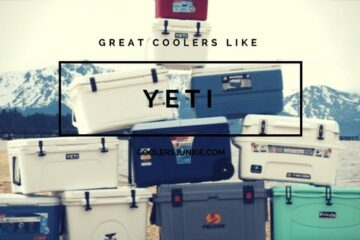 coolers like yeti
