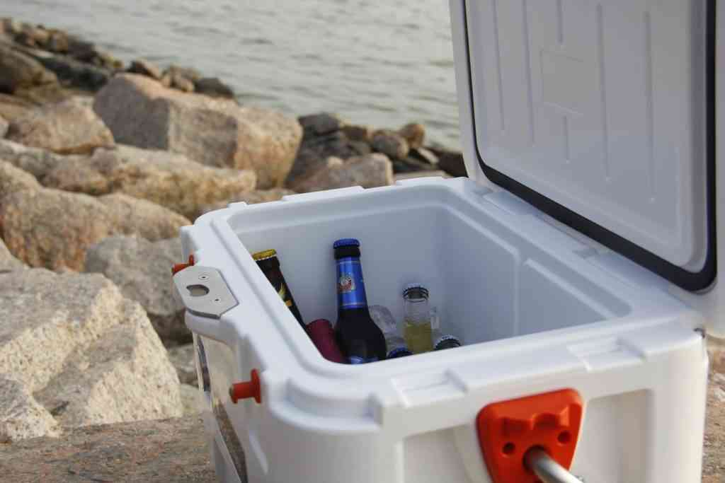 Portable cooler with beers